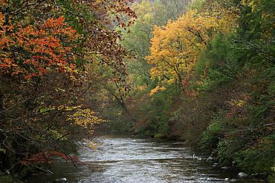 Autumn's Splendor Print by TnBackroadsPhotos