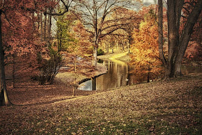 Art Print featuring the photograph Awesome Autumn by Mary Timman