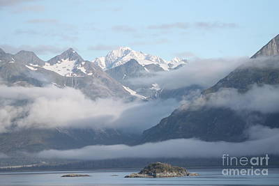 Photograph - Aww Alaska by Pamela Walrath