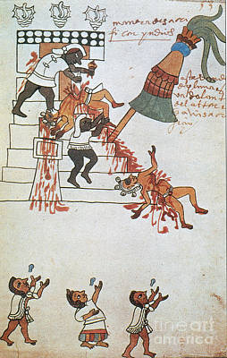 Human Sacrifice Photograph - Aztec Human Sacrifice, Codex Tudela by Photo Researchers