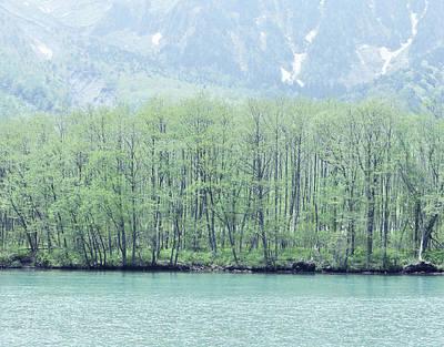 Azusa River Of Early Summer World Of Fresh Green Art Print by Yusuke Murata