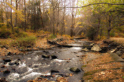 Babbling Brook In Autumn Art Print