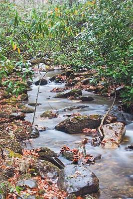Photograph - Babbling Brook by Sandi Blood