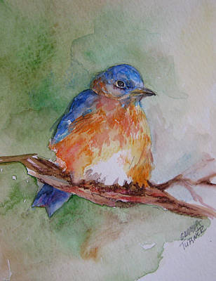 Art Print featuring the painting Baby Blue Bird by Gloria Turner