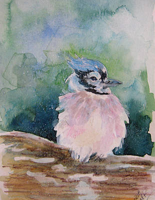 Baby Blue Jay Art Print by Gloria Turner