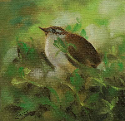 Baby Carolina Wren Art Print by Linda Eades Blackburn