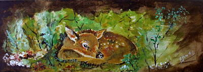 Whitetail Fawn Painting - Baby Deer by Amalia Jonas
