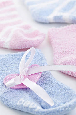 Bow Tie Photograph - Baby Socks  by Elena Elisseeva