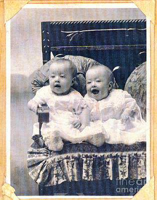 Photograph - Baby Twins by Donna Munro