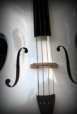 Cellos Photograph - Bach's Prelude by The Art Of Marilyn Ridoutt-Greene