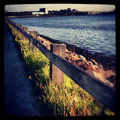 Trail Wall Art - Photograph - Back Bay,  Like Elsewhere by Chris T Darling