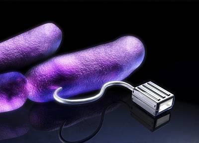 Bacterial Computing, Conceptual Artwork Art Print