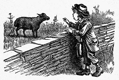 Bah, Bah, Black Sheep Art Print