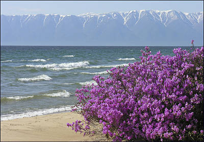 Photograph - Baikal Lake 2 by Vladimir Kholostykh