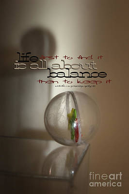 Photograph - Balance - With Words by Vicki Ferrari Photography