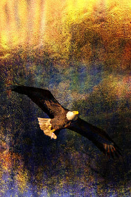 Digital Art - Bald Eagle Abstract by J Larry Walker