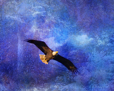 Digital Art - Bald Eagle Bringing A Fish by J Larry Walker