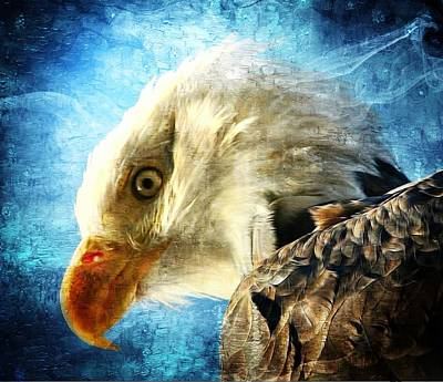 Digital Art - Bald Eagle by Carrie OBrien Sibley