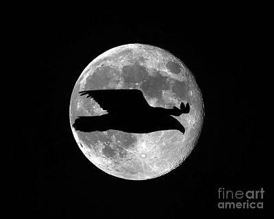 Bald Eagle Moon Art Print by Al Powell Photography USA