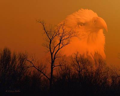 Walker Digital Art Digital Art - Bald Eagle Spirit Of Reelfoot Lake by J Larry Walker