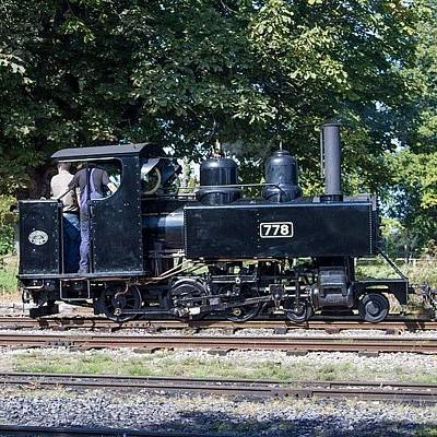 Steam Wall Art - Photograph - Baldwin Wd Loco No 778 At Pages Park by Dave Lee
