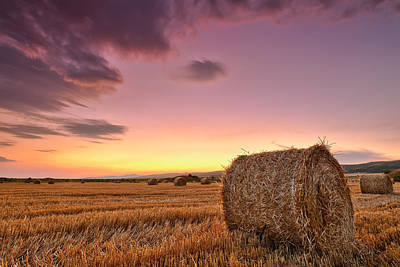 Bale Photograph - Bales At Twilight by Evgeni Dinev