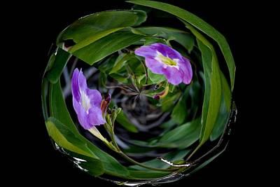 Ball Of Foliage Art Print