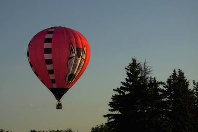 Photograph - Balloon - Montgolfiere by Michel Legare