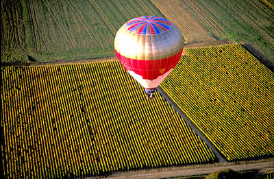 Movies Star Paintings - Ballooning Over Burgundy by Carl Purcell