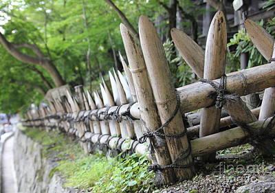 Bamboo And String Art Print