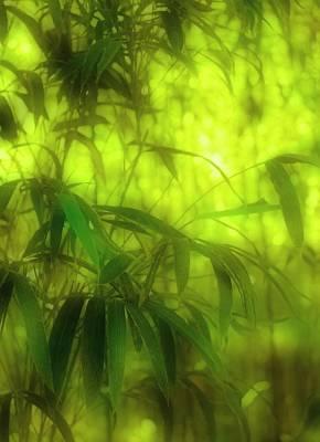 Bamboo Batik Art Print by Judi Bagwell