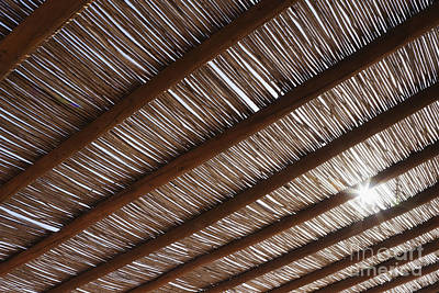 Bamboo Roof Art Print by Jeremy Woodhouse
