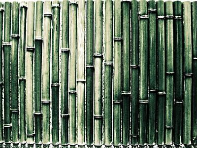 Bamboo Wall Art Print By M.taka