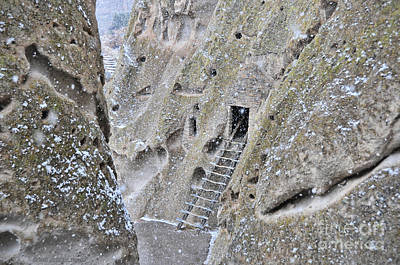 Photograph - Bandelier National Monument by David Arment