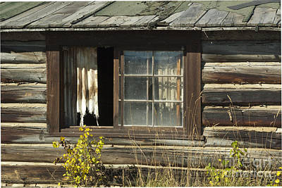 Photograph - Bar Bc Ranch - Grand Tetons by Sandra Bronstein