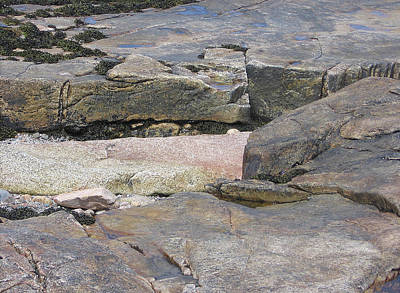 Photograph - Bar Harbor Rocks by J R Baldini M Photog Cr