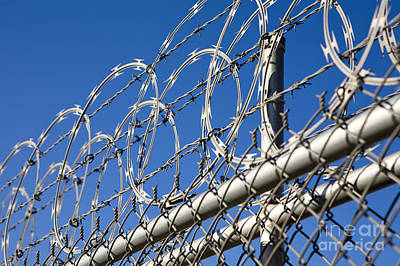 Barbed Wire And Chain Link Fence Art Print by Paul Edmondson