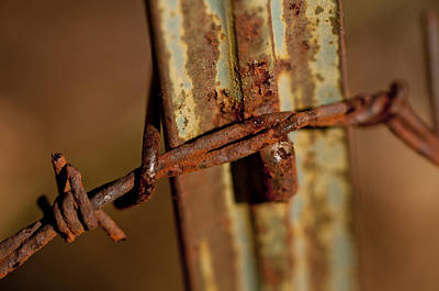 Photograph - Barbed Wire And Rusty Fence Post by Wilma  Birdwell