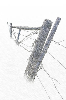 Classic Christmas Movies Royalty Free Images - Barbed Wire Fence in a Snow Storm Royalty-Free Image by Randall Nyhof