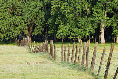 Barbed Wire Fence In Disrepair Separating Fields Art Print