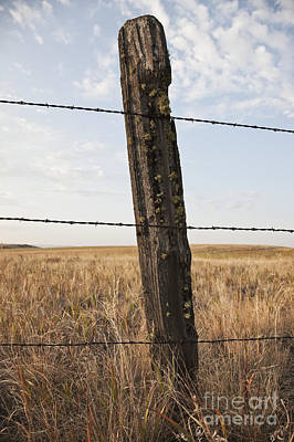 Barbed Wire Fencing And Wooden Post Art Print by Jetta Productions, Inc