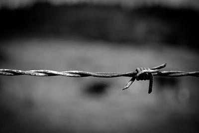 Barbed Wire Art Print by Raimonds Raginskis