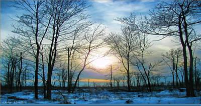 Snowy Day Mixed Media - Bare Of Winter by Debra     Vatalaro