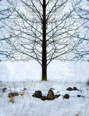 Bare Tree In Winter Art Print by Jill Battaglia