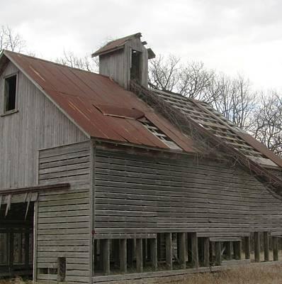 Photograph - Barn-31 by Todd Sherlock