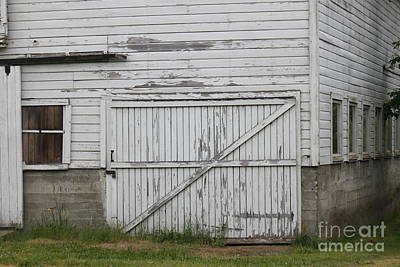 Photograph - Barn Door by Terri Thompson
