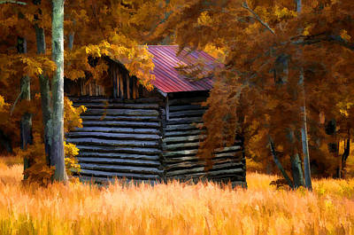 Photograph - Barn In The Woods by Steve Hurt