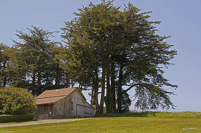 Photograph - Barn In Tomales by Mick Anderson