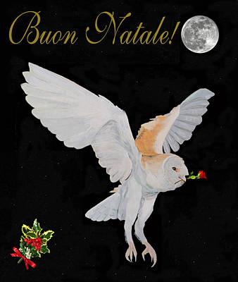 Mixed Media - Barn Owl Buon Natale Merry Christmas by Eric Kempson