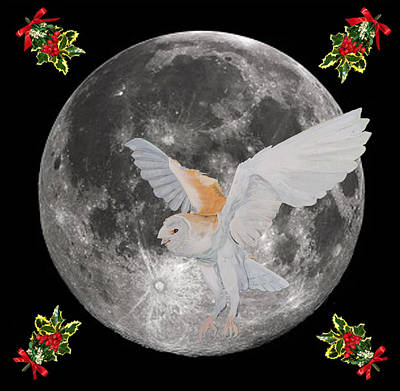Lesvos Mixed Media - Barn Owl Christmas by Eric Kempson